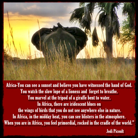 Africa-travel-quote