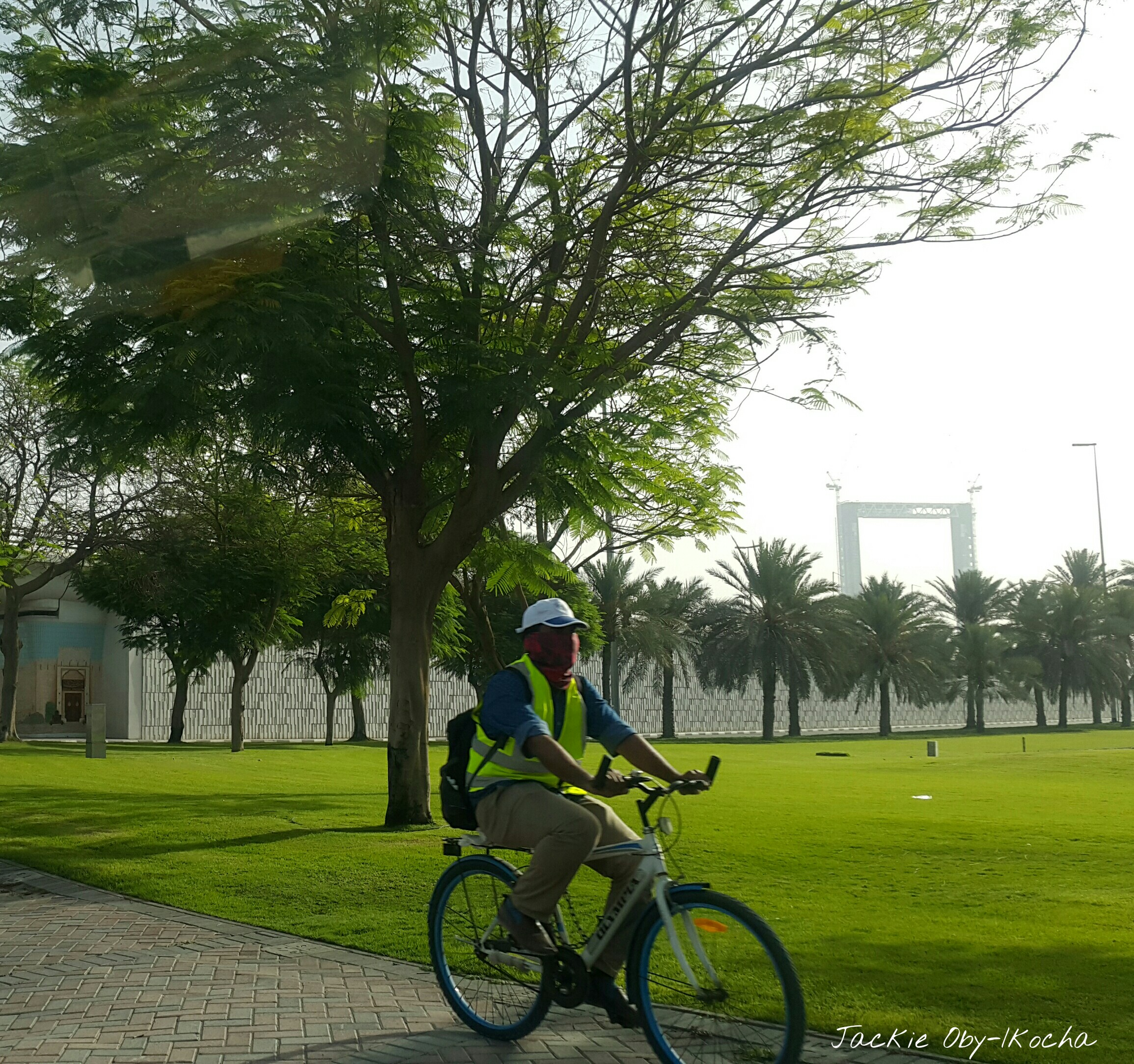 Bicycle_Rider[1]