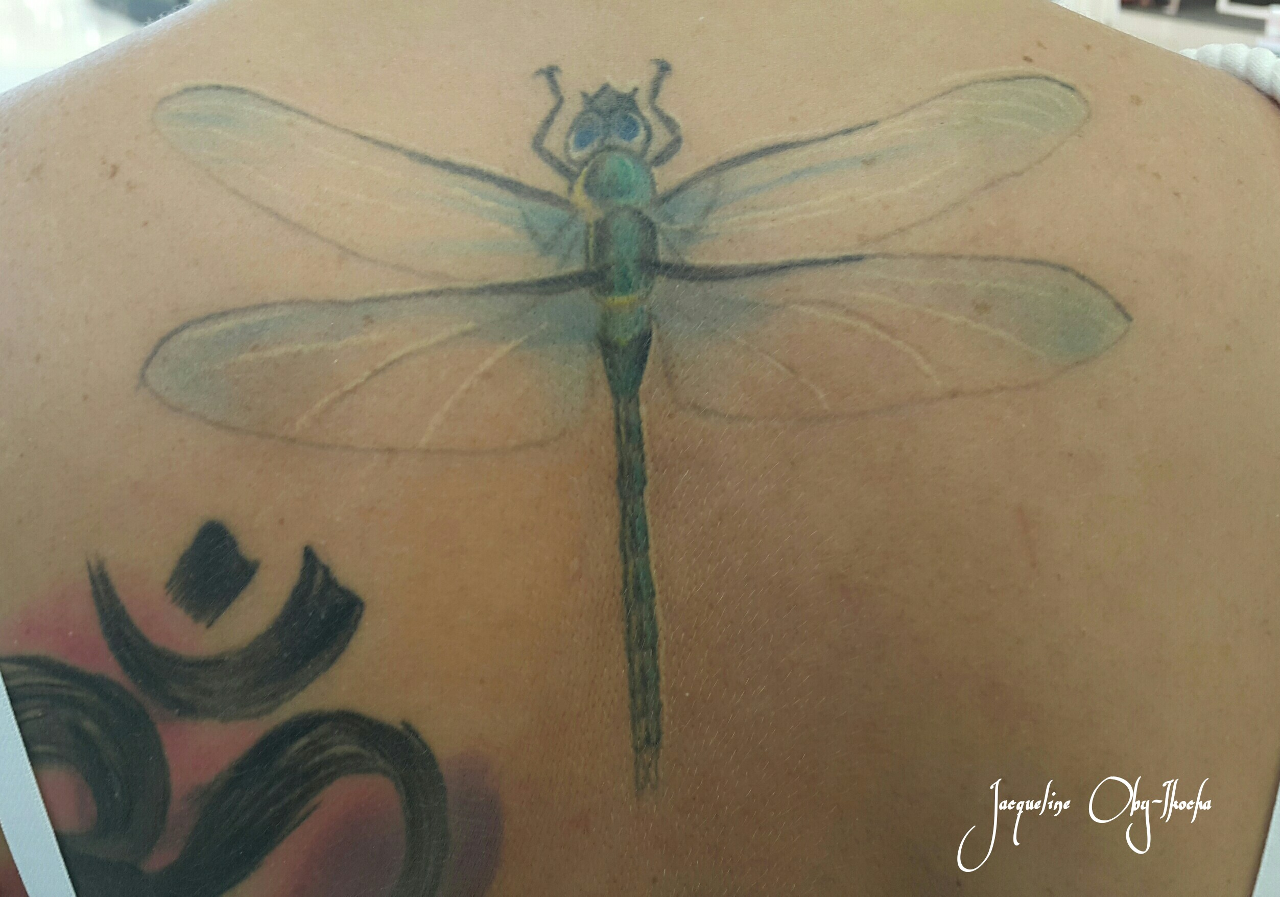 Symbolism Of The Dragonfly A Cooking Pot And Twisted Tales