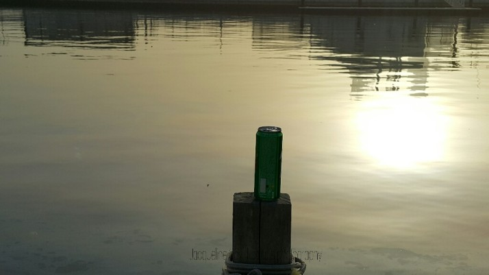 Environmental issues, Trash, Marine Life, Human Behaviour