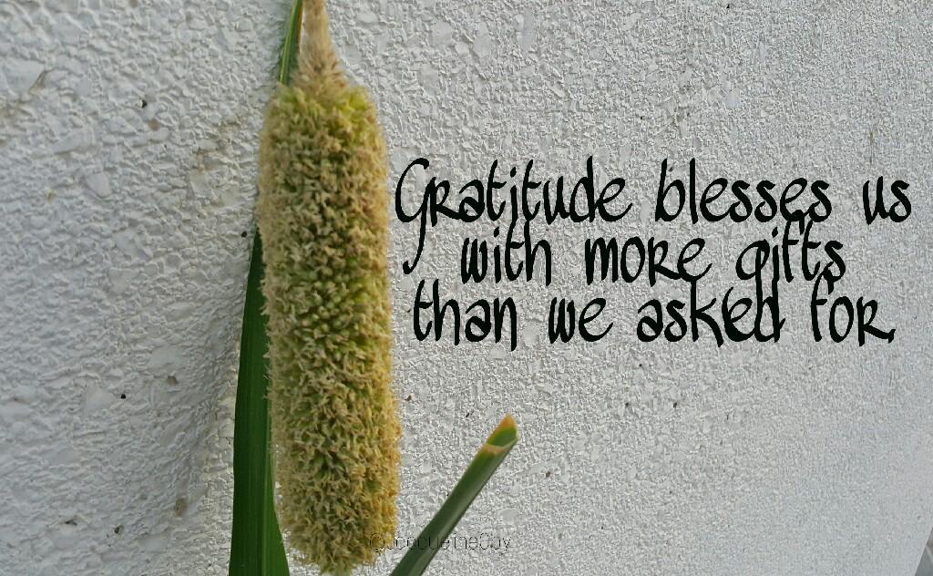 Gratitude, Quote, Divine Provision, Blessings, Favour