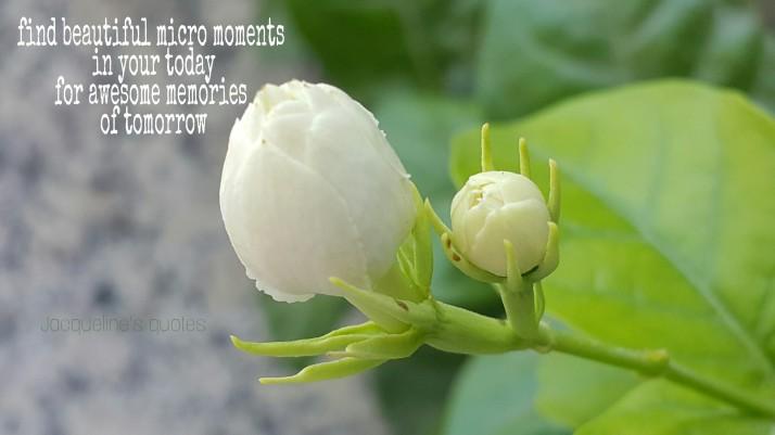 Moments, Memories, Jacqueline's Quotes