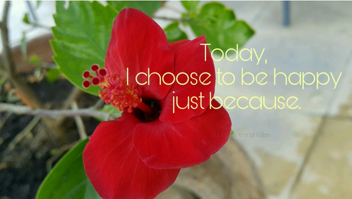 Flower petals, quote, Happiness, Today, Photograph, Gratitude