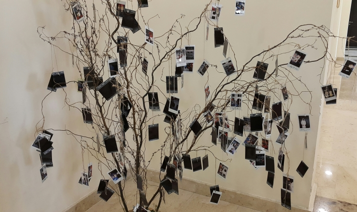 Photographs, Photo Tree, Creative Ideas, Photography