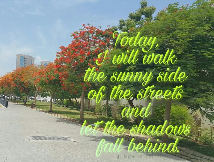 Today, Brightness, Life quotes, Shadows, Positive Thinking, Inspiration