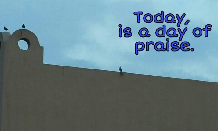 Today, Positive Quotes, Praise, Grateful,