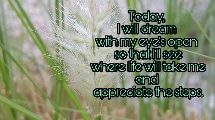 Today, Dream, Aspirations, Inspiration, Life, Quotes,