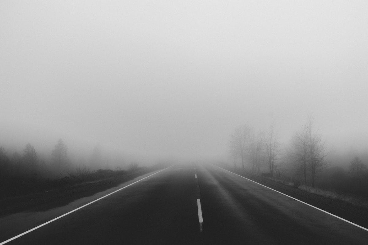 road, fog, mist, tomorrow, future, going forward