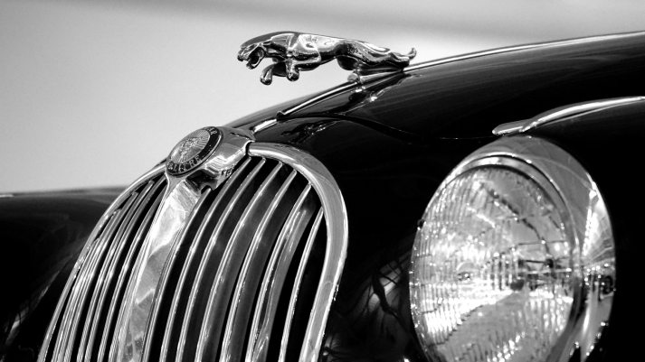 Romance, Flash Fiction, Jaguar, Daily Post